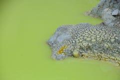 香槟池春天在Wai-O-Tapu热量妙境,罗托路亚,新西兰 库存照片