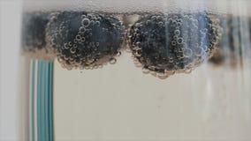 香槟泡影特写镜头附有漂浮在玻璃的蓝莓 慢的行动 股票视频