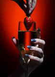 香槟玻璃草莓 库存照片