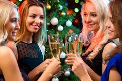 戴香槟眼镜的愉快的少妇  库存图片