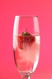 香槟草莓 库存照片