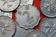 香港硬币  库存照片