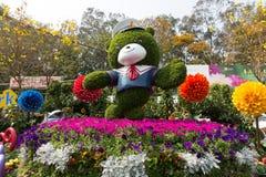 香港花卉展览2018年 库存图片