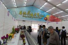 香港花卉展览2018年 库存照片