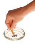 香烟人员碰 图库摄影
