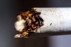 香烟抽烟了 免版税库存照片