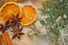 茴香烹调成份的圣诞节桂香加香料星形棍子 免版税库存图片