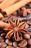 茴香特写镜头、肉桂条和咖啡粒,成份烹调的或烘烤 免版税库存照片