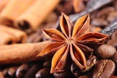 茴香特写镜头、香草、肉桂条和咖啡粒,成份烹调的或烘烤 免版税库存图片