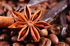茴香特写镜头、香草、肉桂条和咖啡粒,成份烹调的或烘烤 库存图片