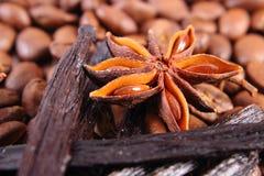 茴香特写镜头、香草棍子和咖啡粒,成份烹调的或烘烤 图库摄影
