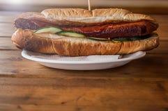 香肠三明治-香肠三明治卷 唯一,不健康 免版税库存照片