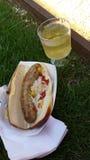 香肠和白葡萄酒在草 免版税图库摄影