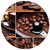 茴香芳香豆小豆蔻巧克力桂香咖啡成份糖 库存图片