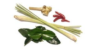 香茅,高良姜,非洲黑人石灰叶子,辣椒 免版税库存照片