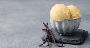 香草冰淇淋用在金属葡萄酒碗拷贝空间的香草荚 库存图片