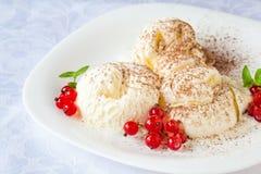香草冰淇淋用红浆果和可可粉 免版税库存图片