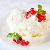 香草冰淇淋用红浆果 库存图片