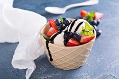 香草冰淇淋用莓果和巧克力糖浆 免版税库存照片