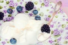 香草冰淇淋 库存照片
