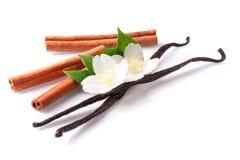 香草棍子和桂香与在白色背景隔绝的花 库存照片