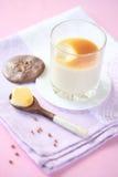 香草潘纳陶砖用焦糖调味汁 库存图片