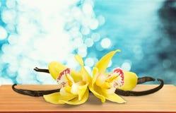 香草荚和花在木背景 免版税库存图片