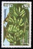 香蕉一系列的图象`异乎寻常的果子`大约1986年 免版税库存图片