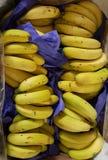 香蕉准备卖和吃准备好卖和吃 免版税库存图片