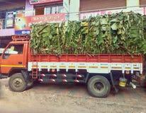 香蕉卡车装载在南方的州的 免版税库存图片