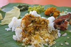 香蕉印地安人叶子 免版税库存图片