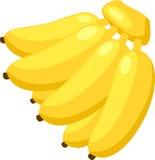 香蕉向量 免版税图库摄影