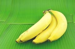 香蕉在一片绿色香蕉叶子被安置 库存照片