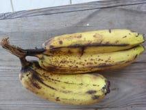 香蕉孪生 免版税图库摄影