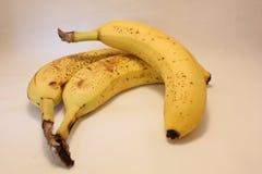 香蕉成熟三 免版税库存照片