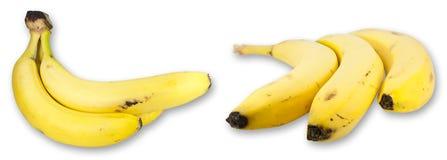 香蕉拼贴画 免版税库存照片