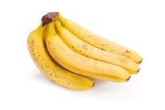 香蕉捆成一束在成熟 库存图片