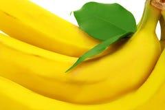 香蕉捆绑 免版税库存图片
