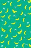 香蕉果子绿松石背景为夏天 库存例证