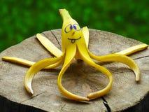 香蕉果皮显示章鱼 免版税图库摄影