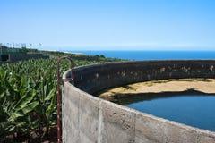 香蕉水池灌溉la palma种植园 库存图片