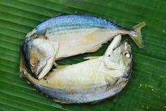 香蕉淡水鳔形鱼叶子鲭鱼 库存照片