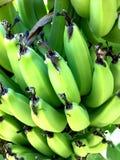 香蕉特写镜头 免版税库存图片
