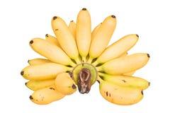 香蕉的手 免版税库存照片