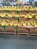 香蕉立场 免版税图库摄影