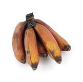 香蕉编组红色 免版税库存照片