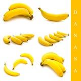 香蕉集 图库摄影