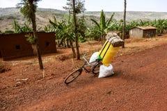 香蕉领域和一辆自行车在红色土路 库存照片