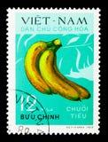 香蕉, serie,大约1970年 免版税图库摄影