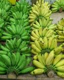 香蕉-绿色和黄色香蕉肩并肩排队了 图库摄影